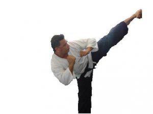 Ejecutivos clases de defensa personal y karate en la