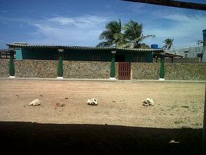 Alquilamos casa vacacional en playa el supi paraguana
