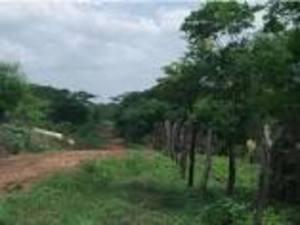 Vendo terreno propio 28 hectareas