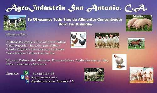 Alimento balanceados y concentrados para animales