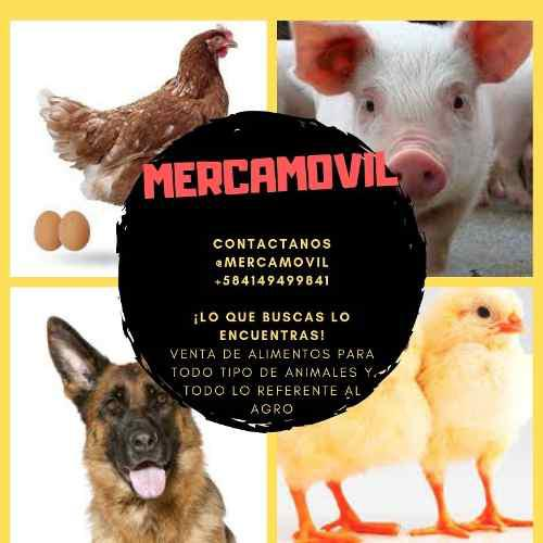 Alimentos De Pollo, Gallina, Cerdos, Vacas Y Accesorios