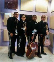 Mariachi barinas show