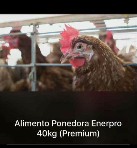 Alimento gallinas ponedoras y engorde, cerdo, lecharina, etc