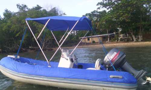 Dingui Caribe Dl13