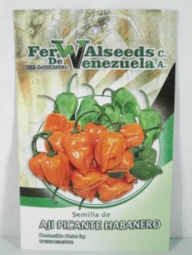 600 semillas de ají picante habanero, sobre de 3 gramos
