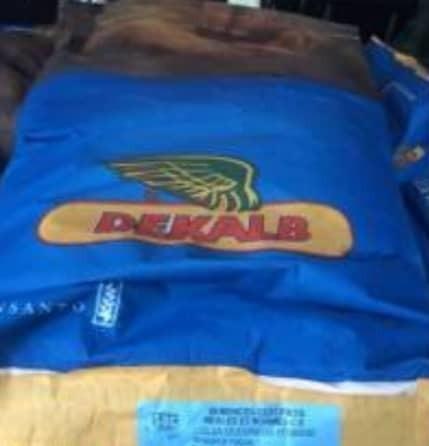 Semillas de maiz dekalb sacos 50 kilos