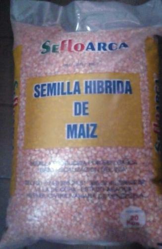 Semillas certificadas de maiz