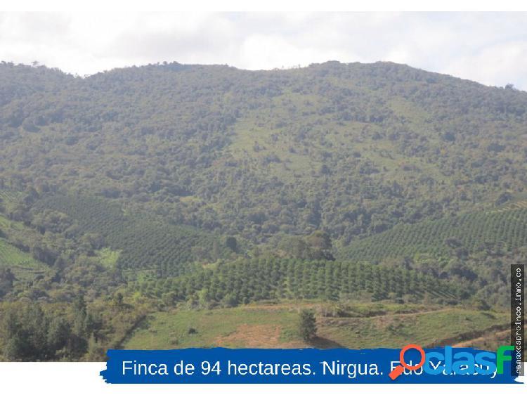 Finca de 94 hectáreas. nirgua. edo. yaracuy