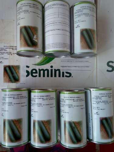 Semilla de pepino humocaro seminis 100grs
