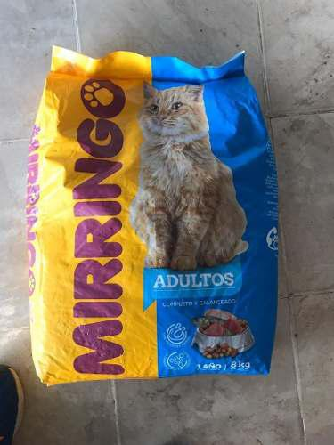 Gatarina Mirringo De 1kg Y De 8kg
