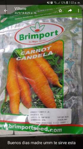 Semilla de zanahoria candela brimport