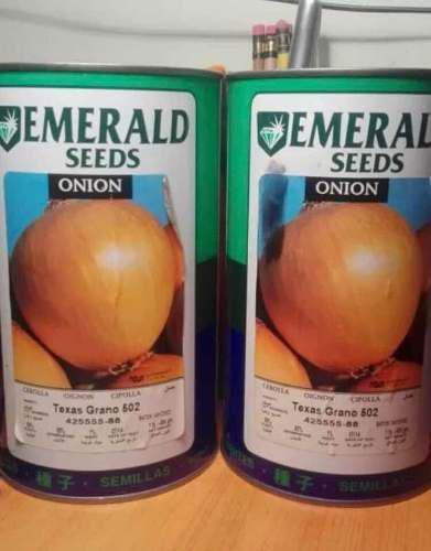 Semillas cebolla texas grano 502