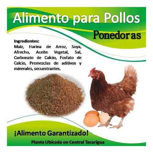 Alimento para pollitas y gallinas ponedoras