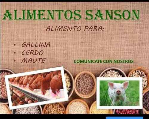 Alimentos para animales gallina, cerdos y materias prima