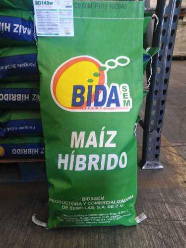 Semilla de maiz amarillo bidasemmexico