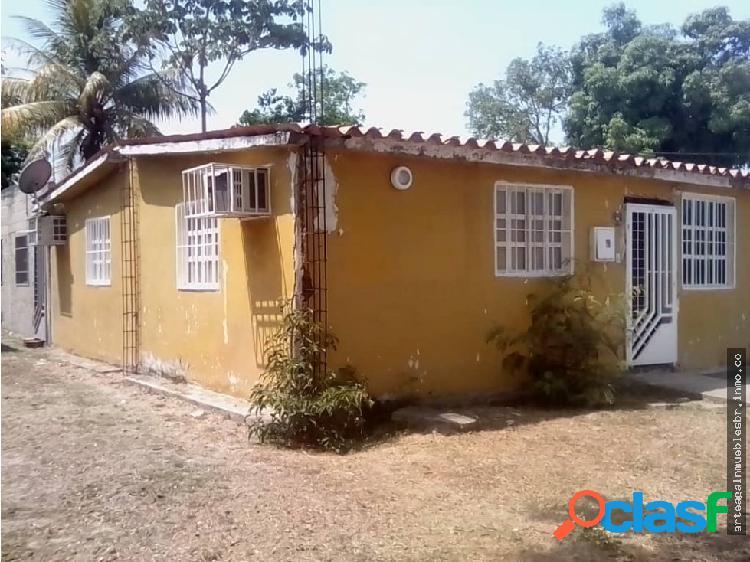 Casa en valencia flor amarillo palma sola