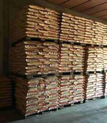 Semillas de maiz seminaca y dekalb certificadas