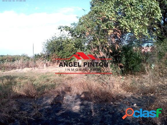 Terreno venta el peru san francisco api 5281