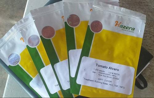 Semillas de tomate álvaro f1 original, marca hazera