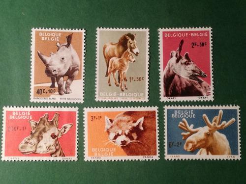 Estampillas belgica, serie: animals zoo antwerp, 1961.