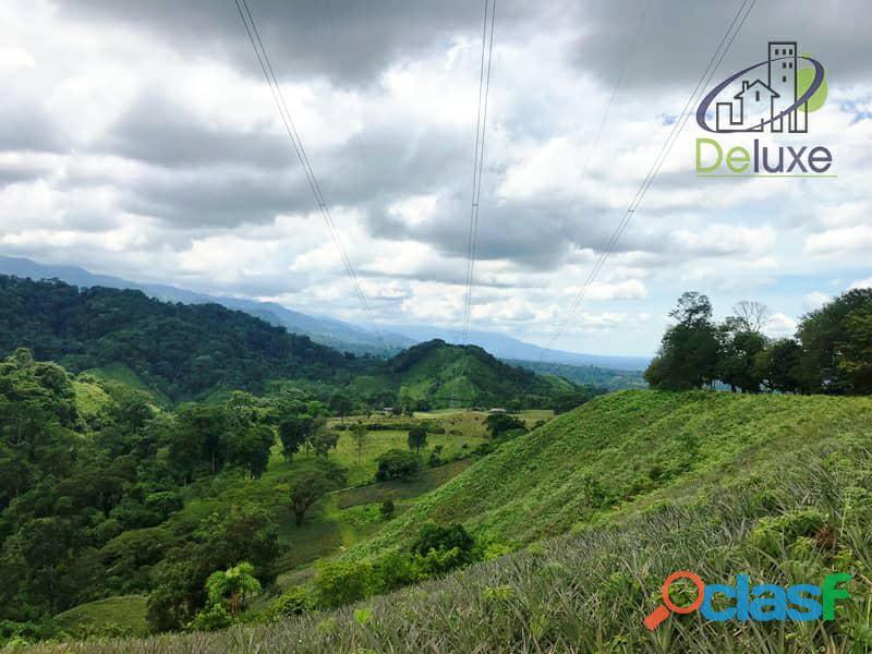 Bella finca con 29.6 hectáreas en Tucaní 4