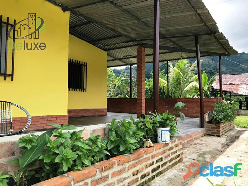 Bella finca con 29.6 hectáreas en Tucaní 5