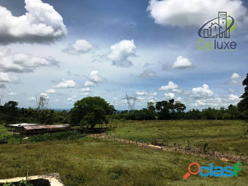 Bella finca con 29.6 hectáreas en Tucaní 6