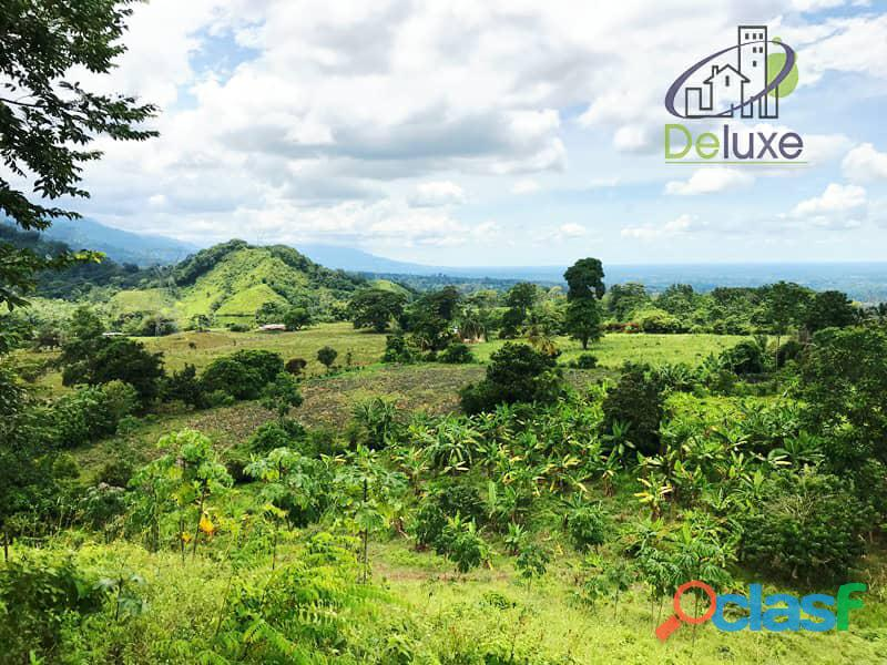 Bella finca con 29.6 hectáreas en Tucaní 11