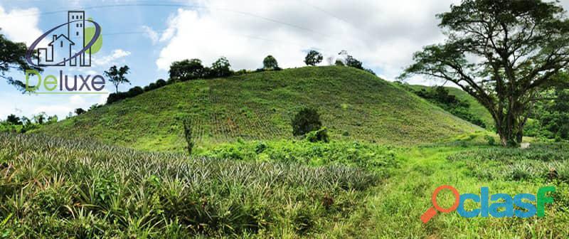 Bella finca con 29.6 hectáreas en Tucaní 12