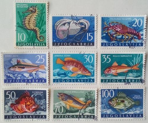 Estampillas de yugoslavia. serie: fauna marina. 1956.