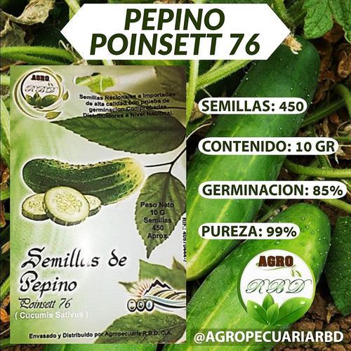 Semillas certificadas de cilantro