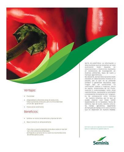 Semillas de pimiento quetzal