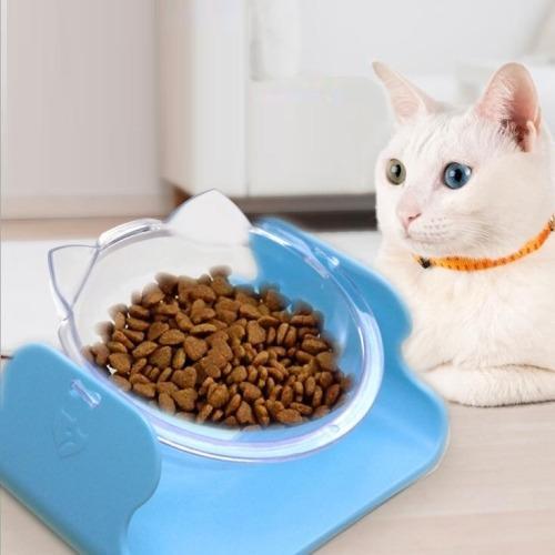 Gato Tazon Agua Transparente Alimento Perro Boca