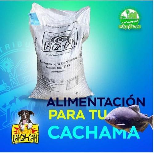 Lanza Fish Alimento Para Cachama