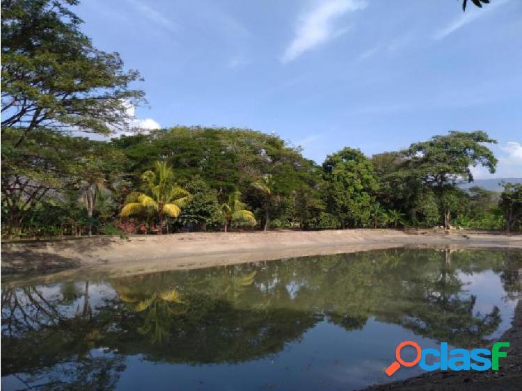 Finca agricola en venta en guacara 20-5824 jlav