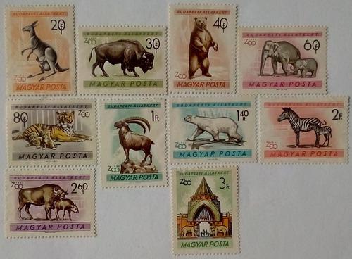 Hungría. serie: zoológico de budapest. año: 1961.