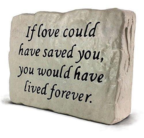 Si Amor Usted Podria Haber Salvado Piedra