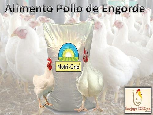 Alimento para pollos de engorde