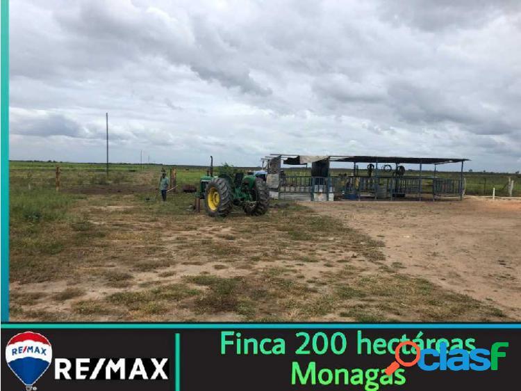 Finca 200 hectáreas - monagas