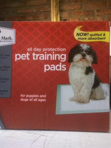 Alfombras de entrenamiento para mascotas y sus nesesidades