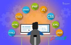 Creación de Paginas Webs Profecionales 9