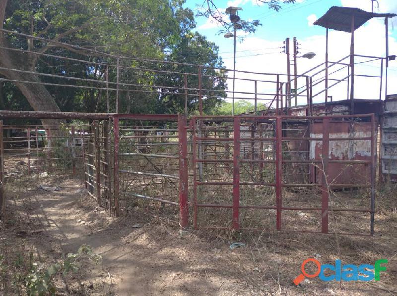 Fundo en venta en el Pao, sector Zambrano, Cojedes, ENMETROS2, 20 50011, asb 18