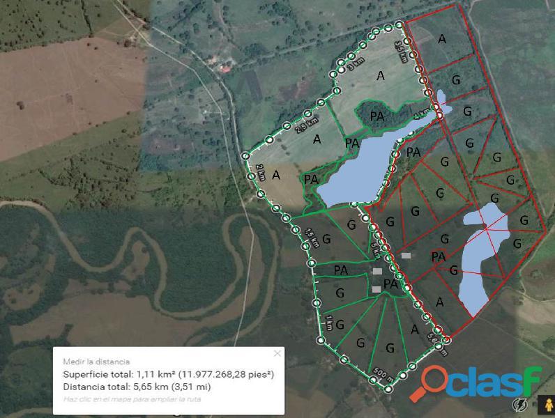 finca 214 hectáreas Barinas