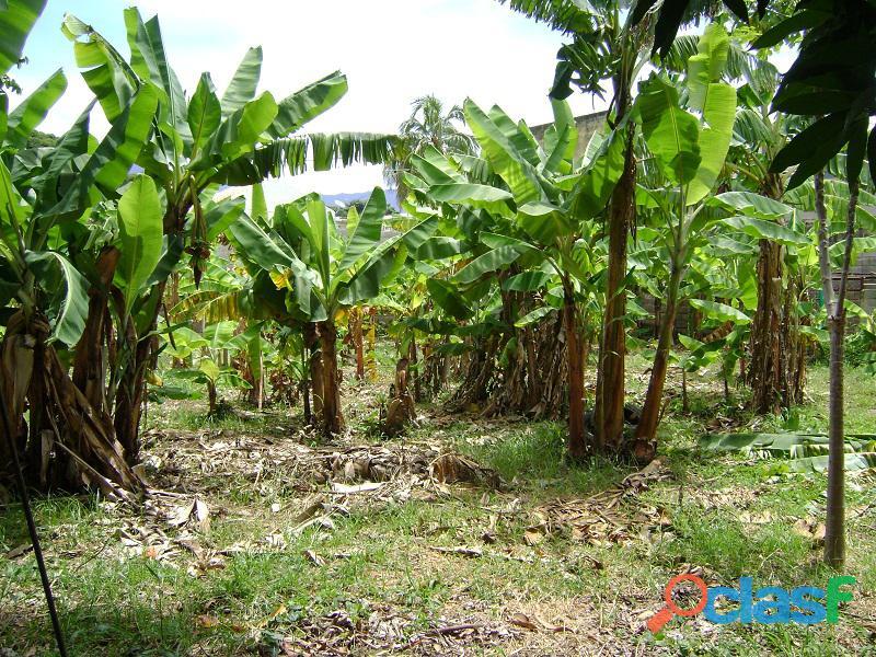 Terreno en Naguanagua, Sector El Guayabal 4