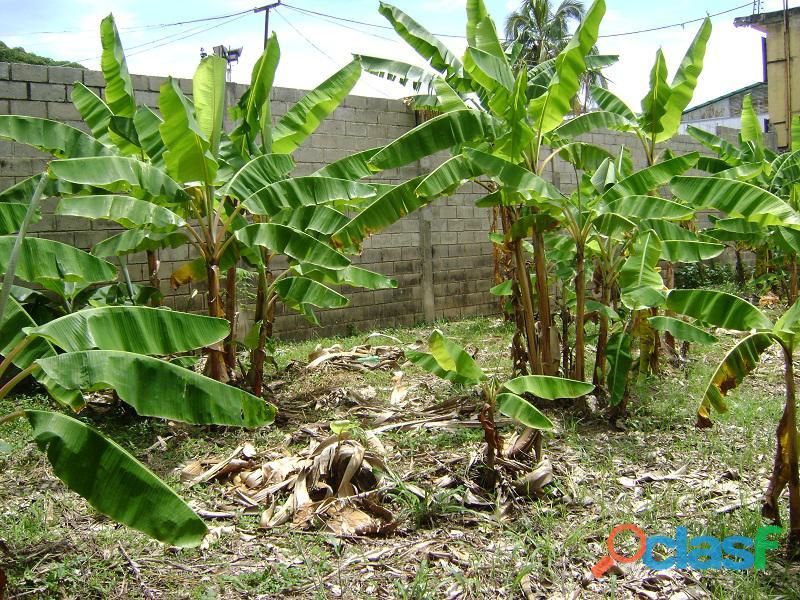 Terreno en Naguanagua, Sector El Guayabal 8