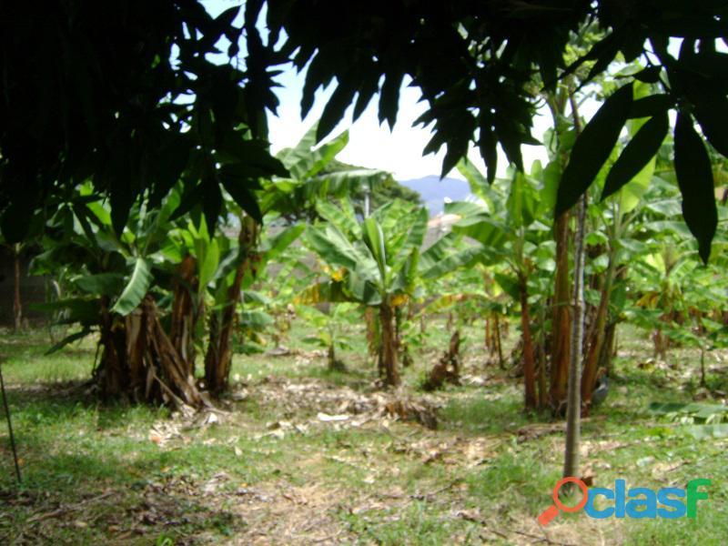 Terreno en Naguanagua, Sector El Guayabal 13