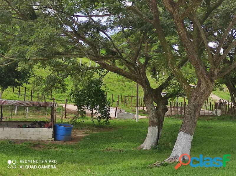 Finca en Tinaquillo, Estado Cojedes. Código FOT   157