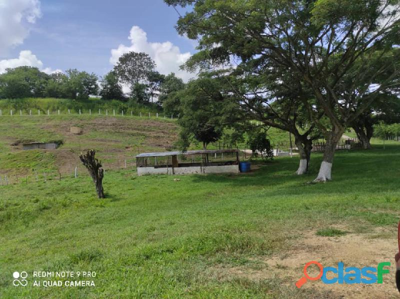 Finca en Tinaquillo, Estado Cojedes. Código FOT   157 3