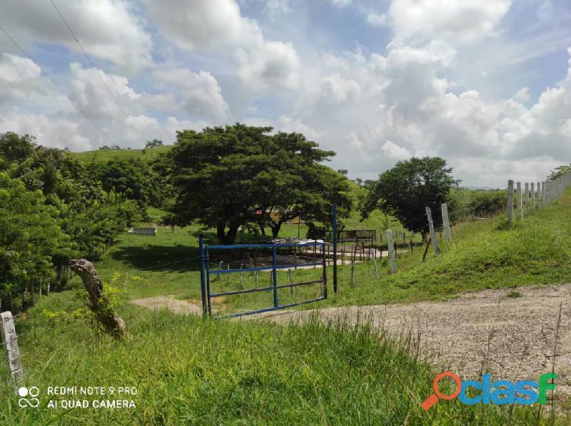 Finca en Tinaquillo, Estado Cojedes. Código FOT   157 4