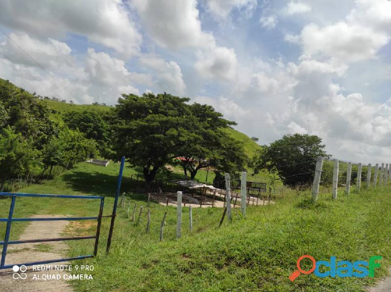 Finca en Tinaquillo, Estado Cojedes. Código FOT   157 5